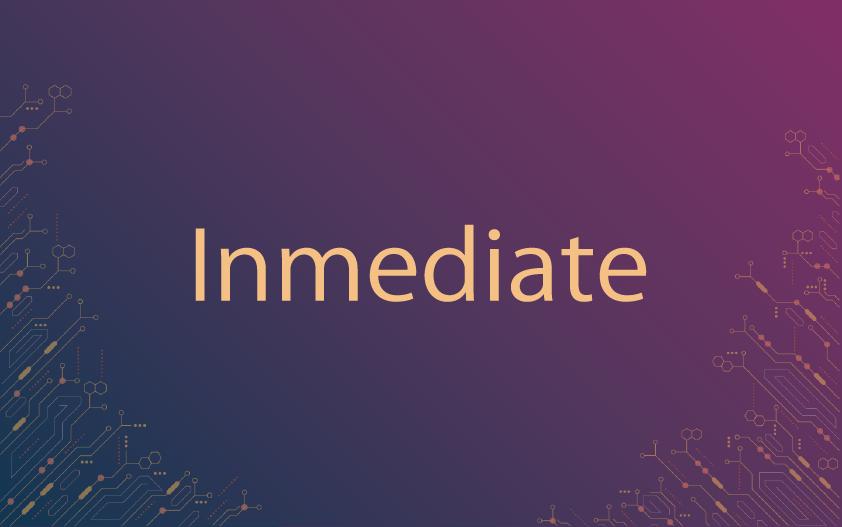 史上初の保険プラットフォーム「Imediate」を徹底解説!共同設立者にも直撃!